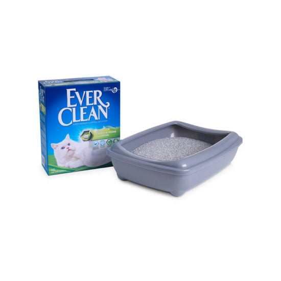 Ever Clean Super Premium Clumping Cat Litter Extra Strong Clumping Scented Product Image with Litter tray